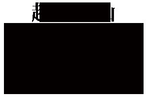 越中富山 石川製麺 ブラックラーメン